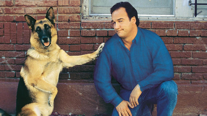 Kutyám, Jerry Lee 2.