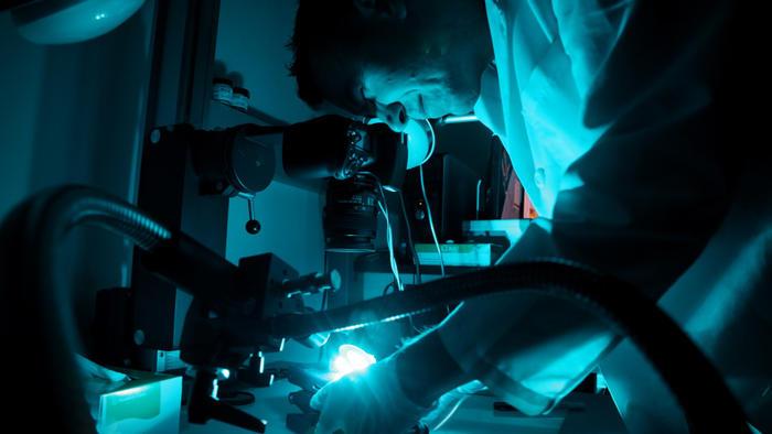 forensics-11_1332350881