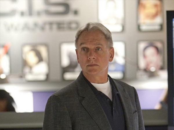 Mark Harmon valójában saját szerszámait használja az NCIS forgatásai alatt. Ugyanazokat, amelyeket saját műhelyében is.