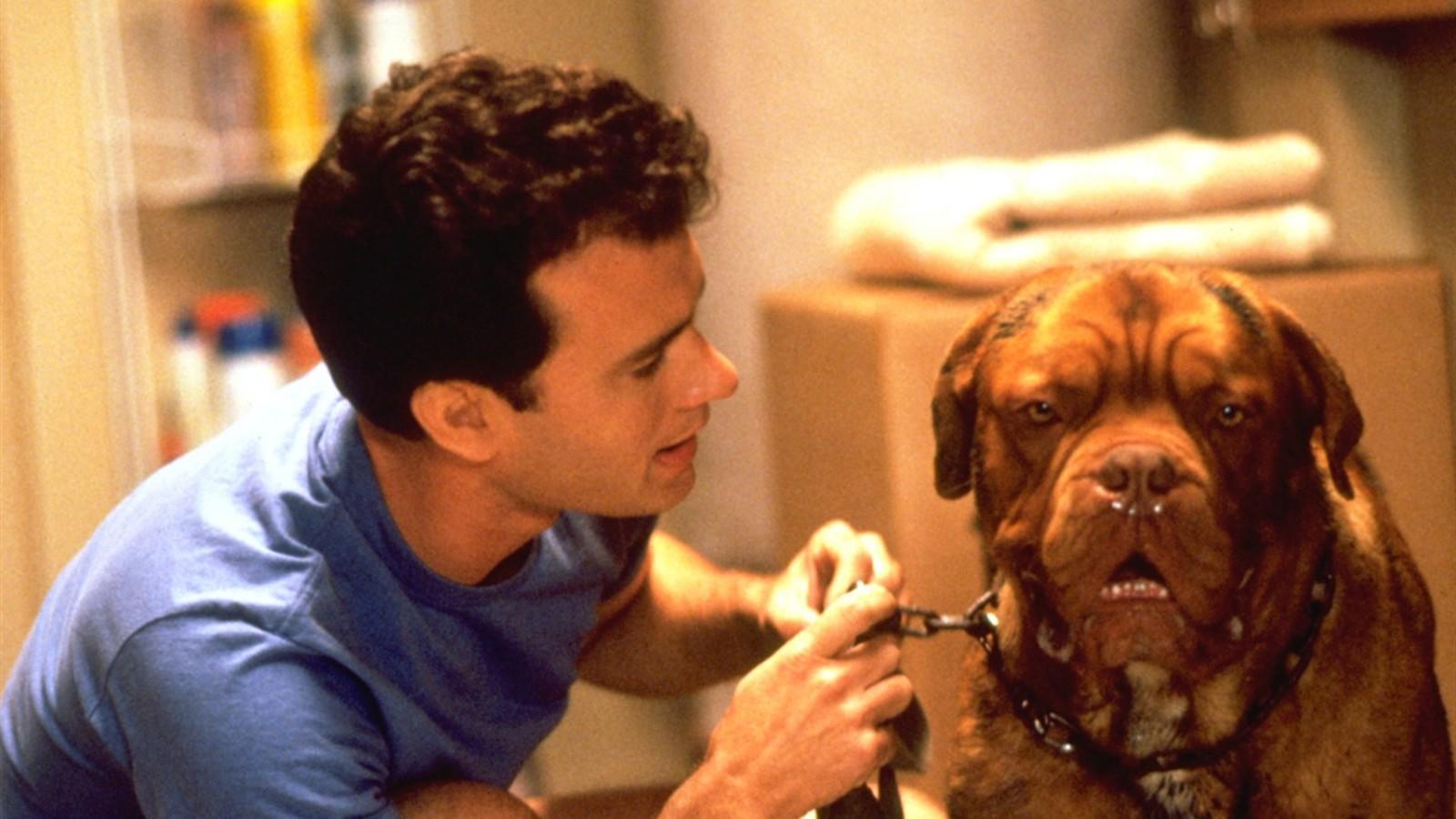 Akadnak hatékony csapatok, de vannak viccesek is, meg ott van Tom Hanks és nyáladzó ebtársa, akik akkor találnak egymásra, amikor fel kell kutatni a kutya gazdájának gyilkosát. (Buena Vista Pictures)
