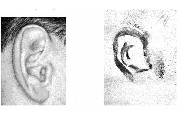 Talán már hallottál arról, hogy az ujjlenyomathoz hasonlóan a fülek lenyomatát is használják az azonosításhoz, azt azonban tuti nem tudod, hogy mióta: 1965-ben a német bíróság füllenyomat alapján ítélt el egy betörőt.