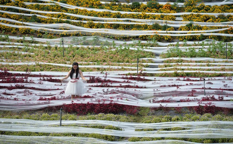 A Guinness világrekord kísérletre elkészített menyasszonyi ruhához 4100 méter hosszú és 1,5 méter széles fátyol tartozik. A Kínában elkészített különlegességet eddig csak egy modell vehette fel a fotózás kedvéért.