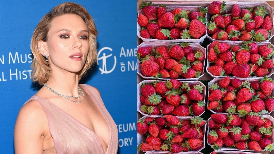 Johansson egyertelműen a legjobb, legnépszerűbb és a legkívánatosabb gyümölcshöz passzol, nem mellesleg pedig tökéletesen megy a pezsgőhöz is. (NameFace LLC/Shutterstock\ Helmut Meyer zur Capellen / imageBROKER/Shutterstock)