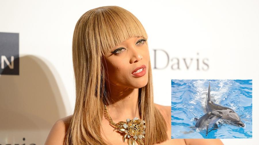 """Tyra Banks egykori topmodell illetve tévés műsorvezető olyasmiktől retteg, amiket mások legszívesebben a keblükre ölelnének: a delfinektől. """"8-9 éves korom óta rettegek tőlük. Rémálmaim vannak, amikben egy medencében vagyok, és delfinek dobálnak, én pedig halálra vagyok rémülve."""" (Getty Images)"""