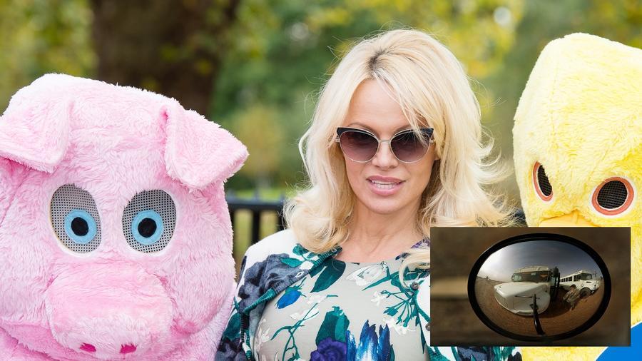 Pamela Anderson - igencsak fura módon - a tükröktől retteg, pontosabban halálra rémül a saját tükörképétől. A jelenséget eisoptrofóbiának hívják. Pam egyébként nem csak tükörbe nézni utál, hanem a tévében sem bírja saját magát megtekinteni. (Getty Images)